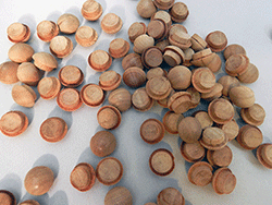 Cherry Mushroom Button Wood Plugs | Bear Woods Supply