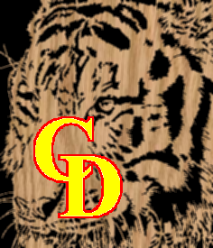 Tiger Portrait 1 - Scroll Saw Pattern by Charles Dearing