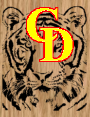 Tiger Face 3 - Portrait-Style Scrollsaw Pattern by Charles Dearing