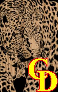 Leopard portrait 2 - Scrollsaw Pattern by Charles Dearing