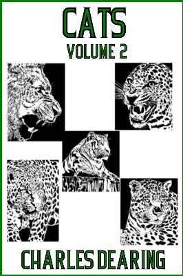 5 wild cats