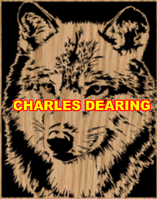 A wolf portrait 1