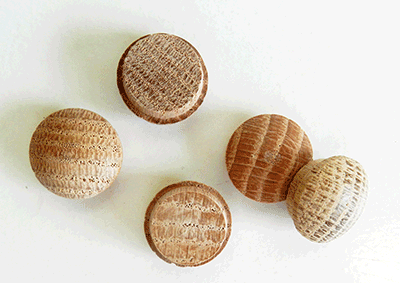 Buy Oak Screw Hole Button Wood Plugs | Bear Woods Supply